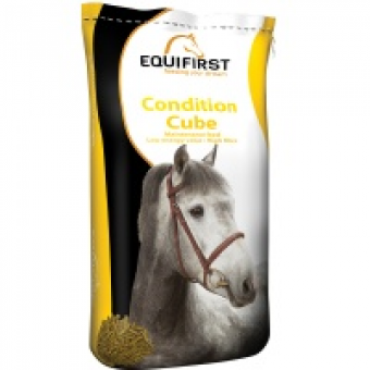 Equifirst condition cube 20 kilo